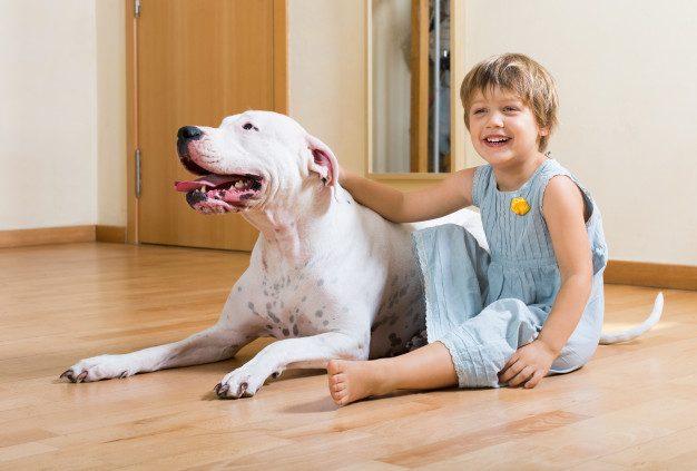 Regras para Animais em condomínios